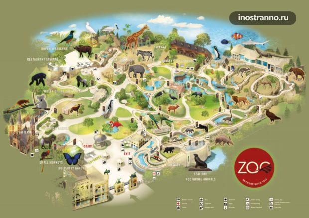 Зоопарк Антверпена карта