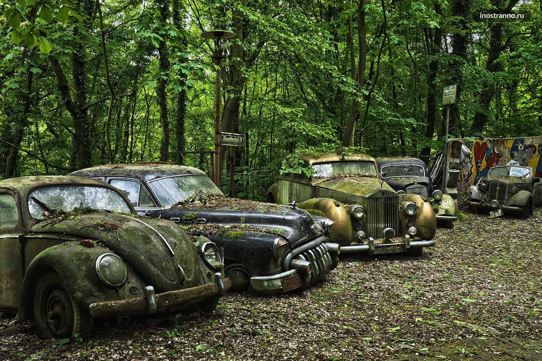 Лес в Шатильоне в Бельгии с кладбищем автомобилей