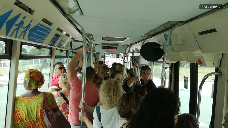 Автобус на Майорке много народу
