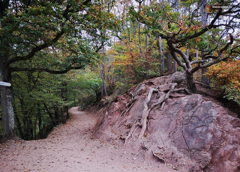 Дорога к замку Эльц