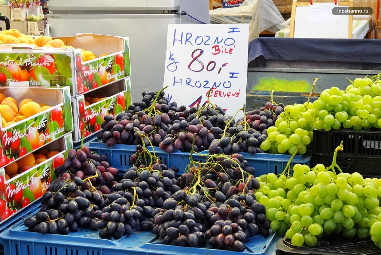 Виноград в Чехии