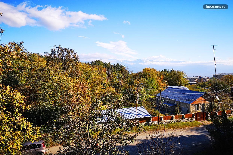 Панорама Телави