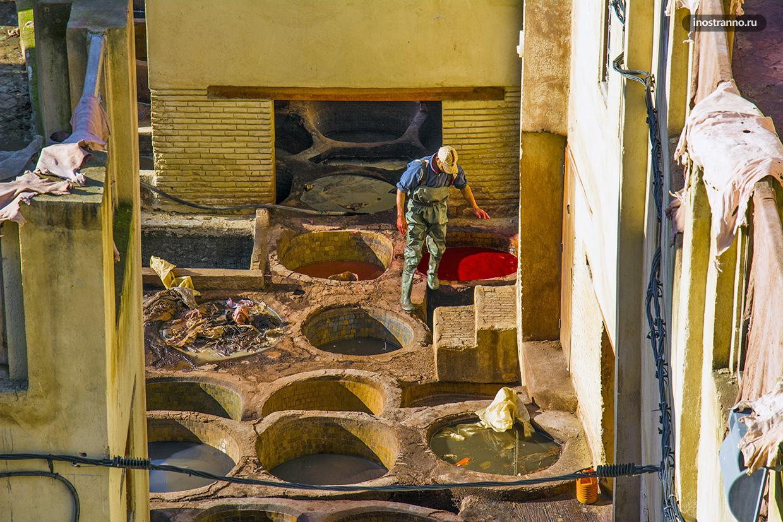Фес Марокко красильни путеводитель и где находятся