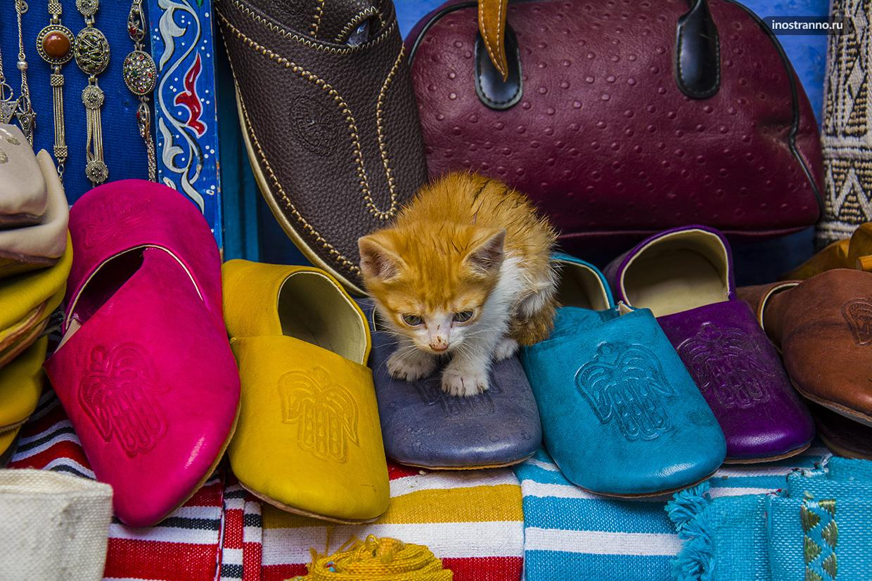 Марокканские тапочки бабуши и кот