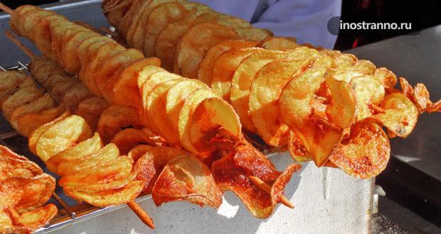 Невкусные блюда в Чехии, которые стоит обходить стороной