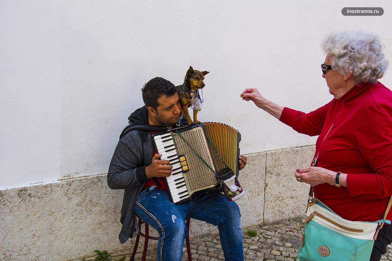 Уличные музыканты в Португалии