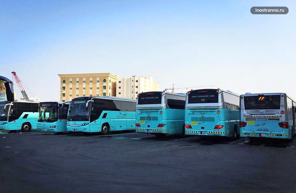 Автобус в Дохе