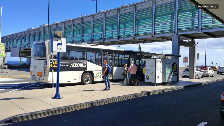 Автобус из аэропорта Мадейры как дешево добраться до города