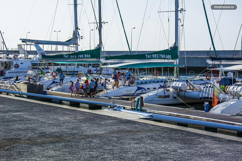 Порт на Мадейре