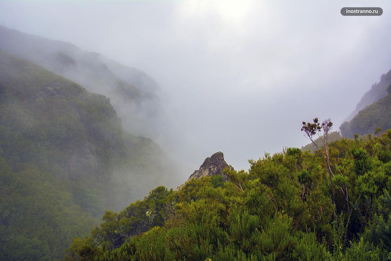 Пейзажи Мадейры