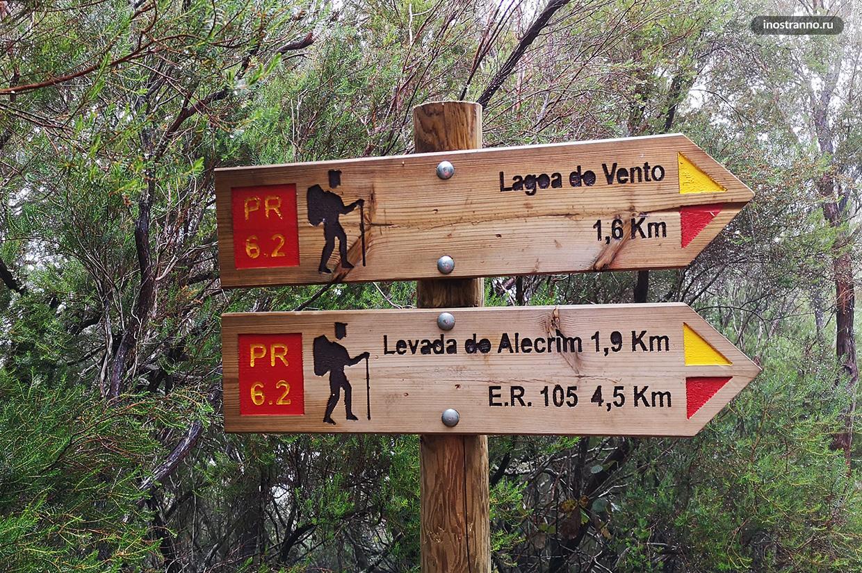 Национальный парк Мадейры с водопадами
