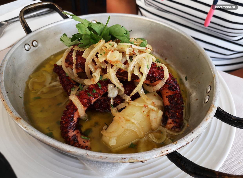 Блюдо из осьминога на Мадейре