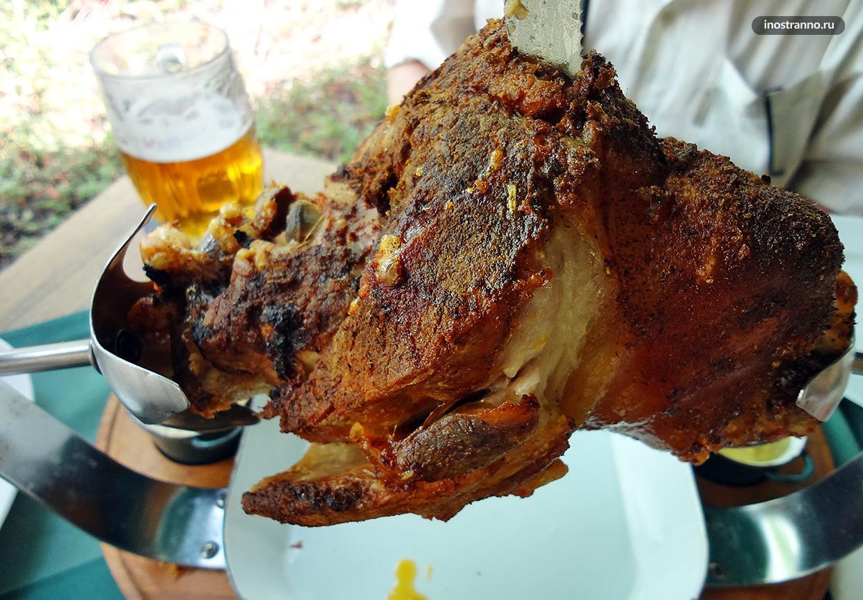 Вепрево колено популярное чешское блюдо