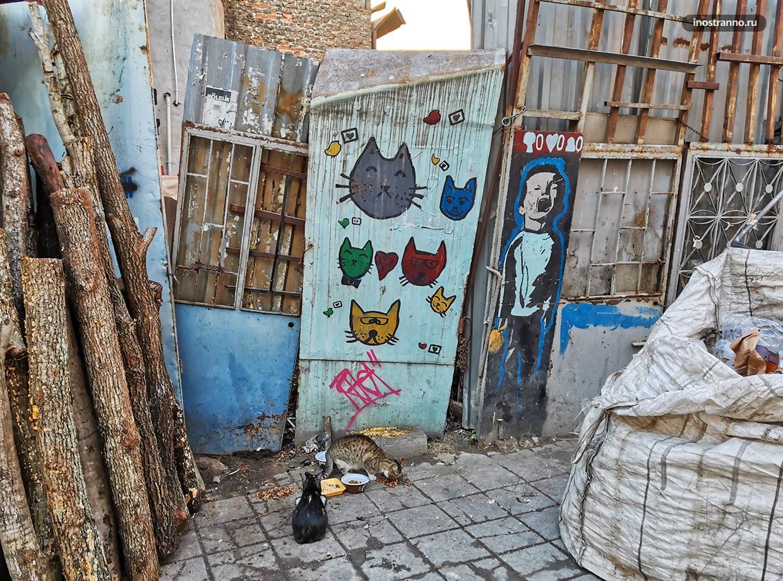 Рисунок с котами в Стамбуле