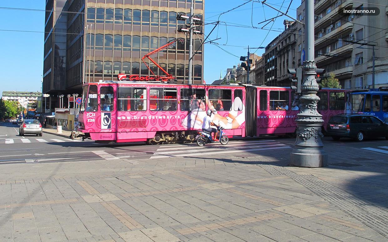 Трамваи Белграда