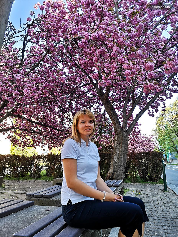 Фото в Праге для Инстаграма