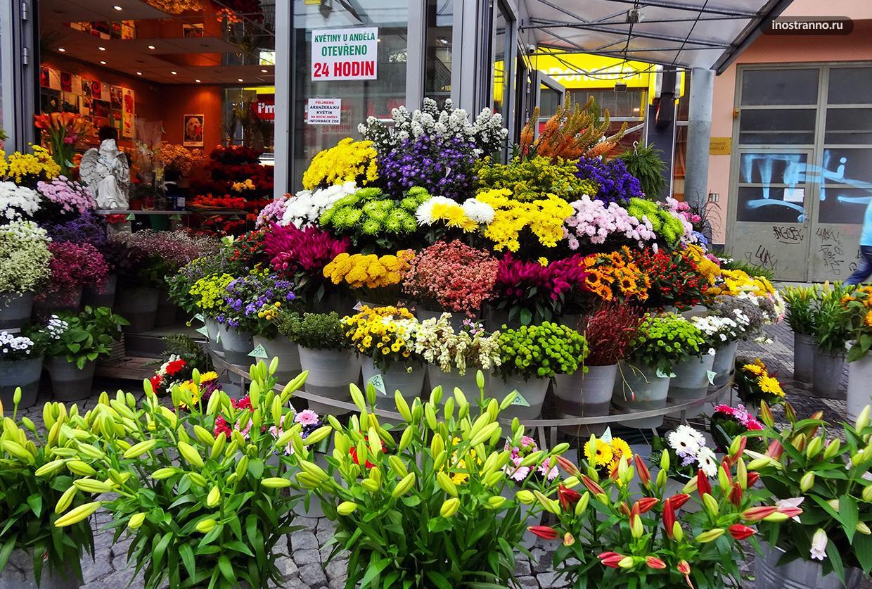 Где в Праге купить цветы