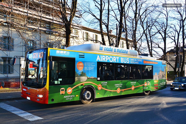 Автобус из аэропорта Бергамо до Милана