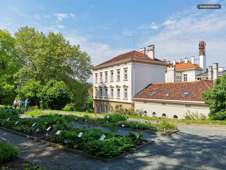 Корпус Карлова университета в Праге