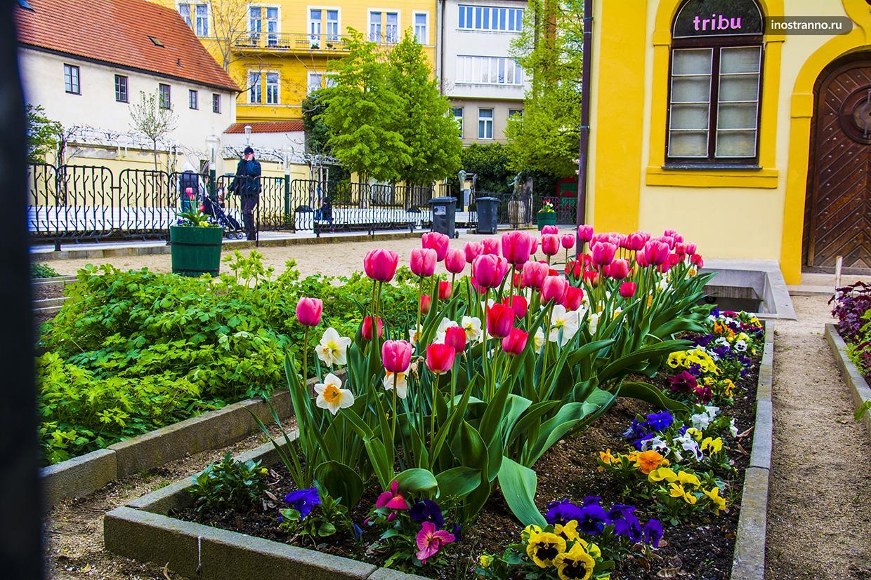 Яркая весна в Праге