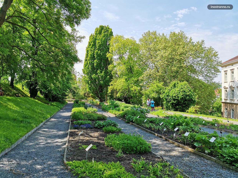 Пражский сад