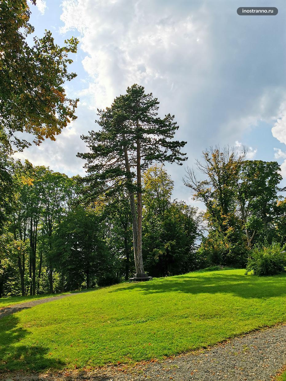 Парк в чешской глубинке