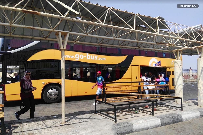 Междугородние автобусы и автовокзал в Шарм-эль-Шейхе