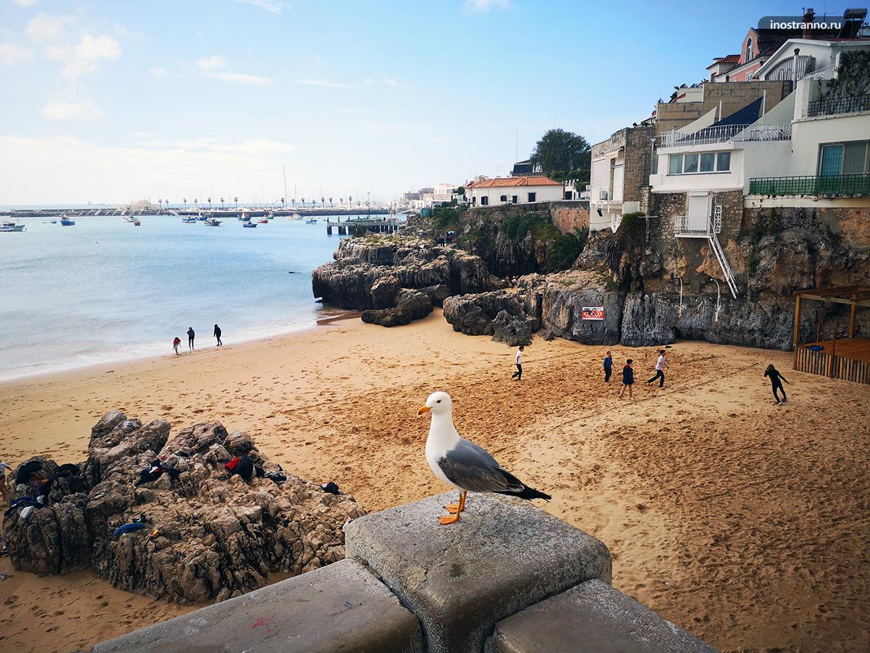Красивый пляж рядом с Лиссабоном