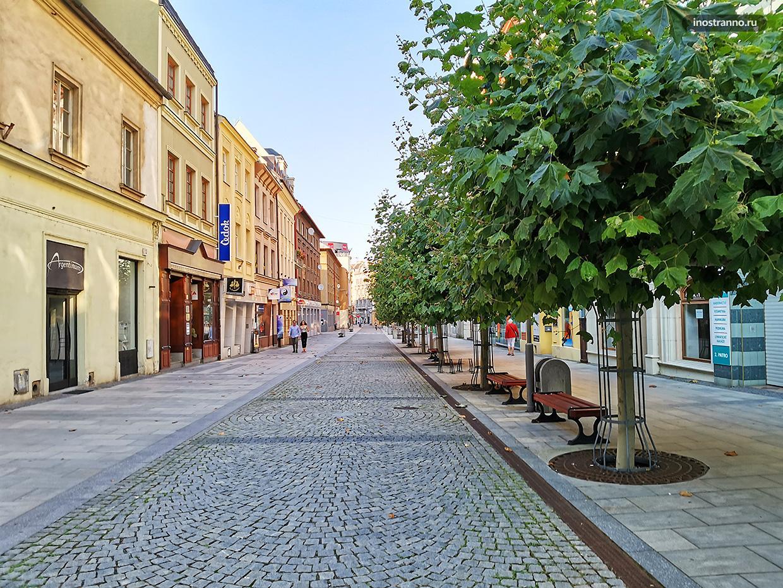 Идеальная пешеходная улица