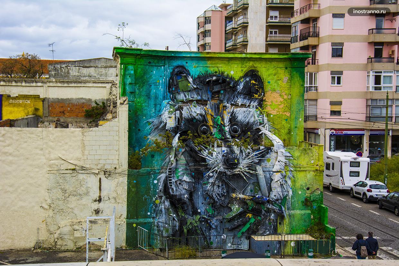 Большой Енот граффити и стрит арт в Лиссабоне художника B0rdallo II