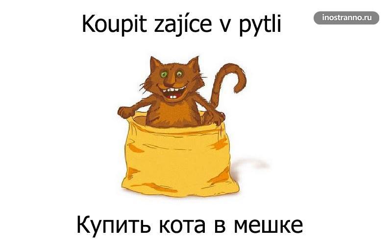 Популярные пословицы на чешском языке с аналогом на русском