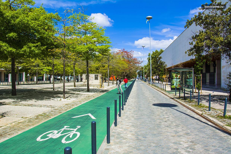 Велодорожка в Европе