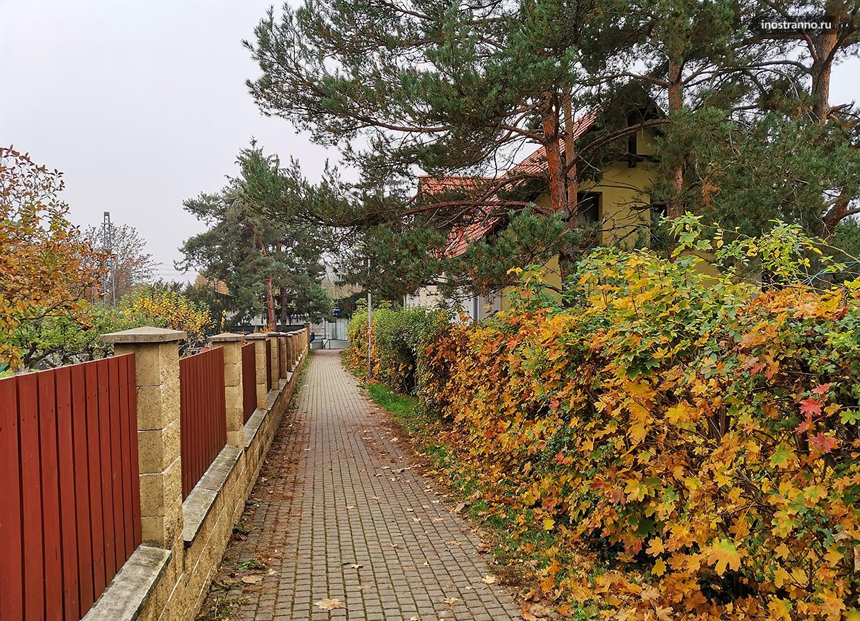 Ноябрь в Праге