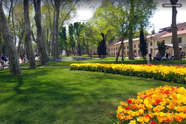 Гюльхане парк в центре Стамбула с тюльпанами