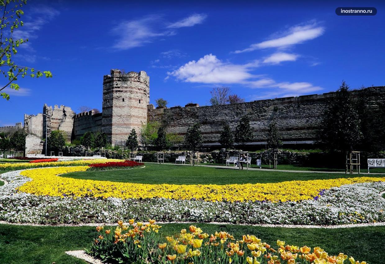 Парк мира цветение тюльпанов в Стамбуле