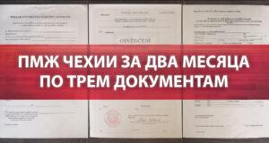 ПМЖ Чехии за два месяца по трем документам
