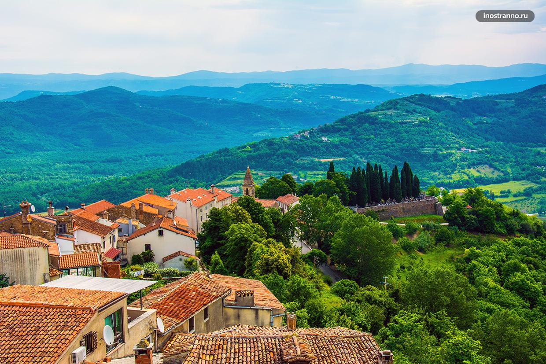 Красивый зеленый регион Истрия