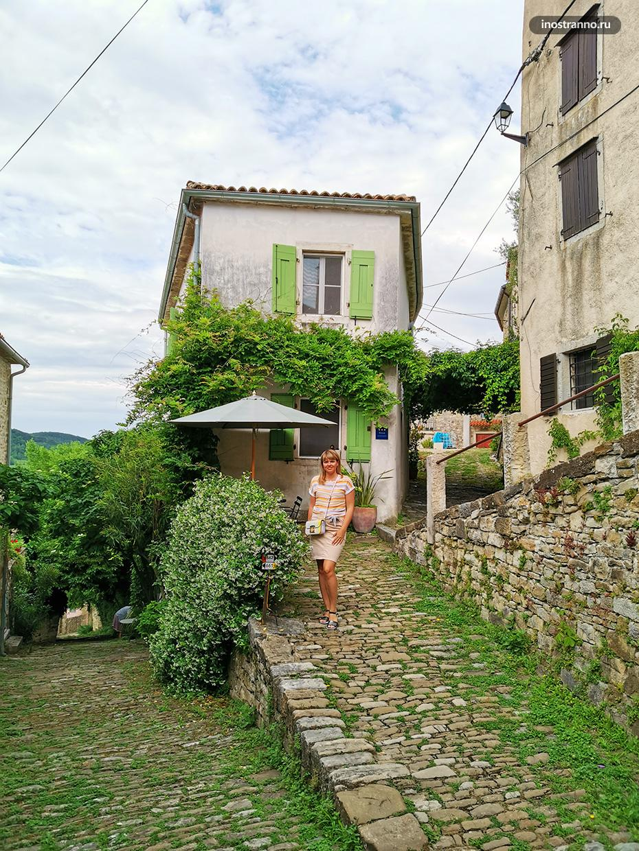 Уютный хорватский городок Мотовун
