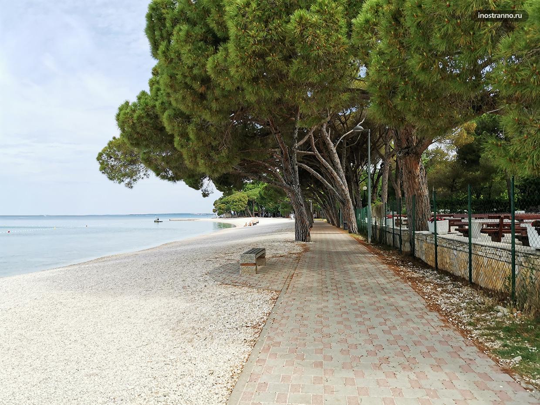 Фажана пляж фото