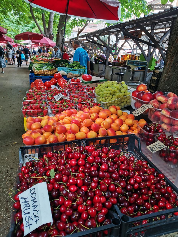 Фрукты и ягоды из Хорватии