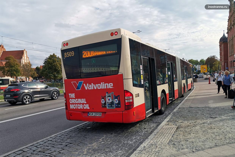 Автобусы Гданьска