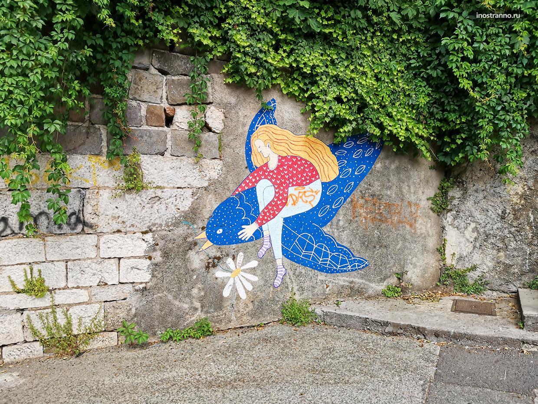 Граффити голубь
