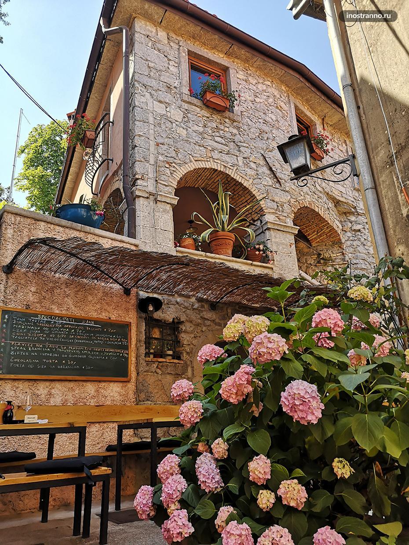 Средневековый дом с гортензиями